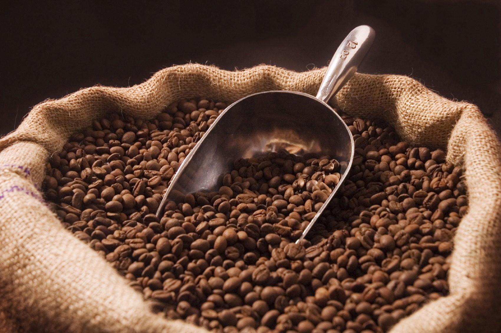 Nuevos estudios de mejora de la ruta del procesado en Cafés Oquendo